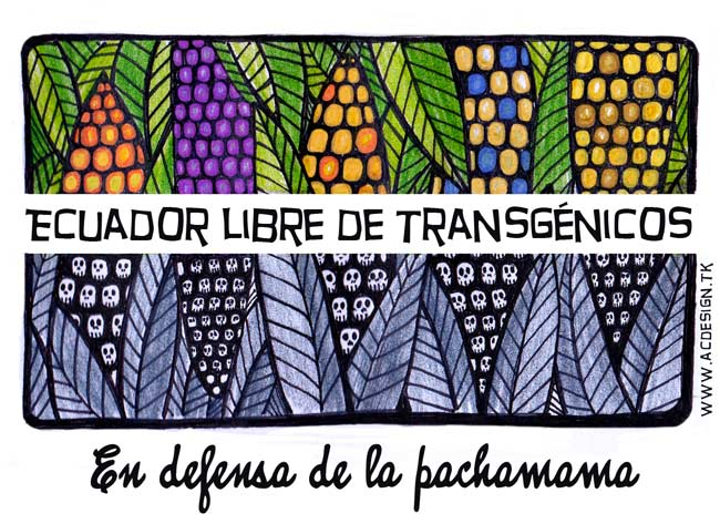 ecuador_libre_de_transgenicos